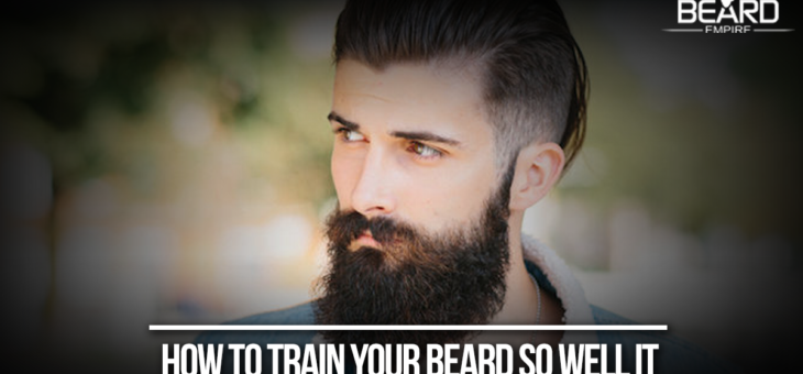 How to train your beard so well it follows all your commands?
